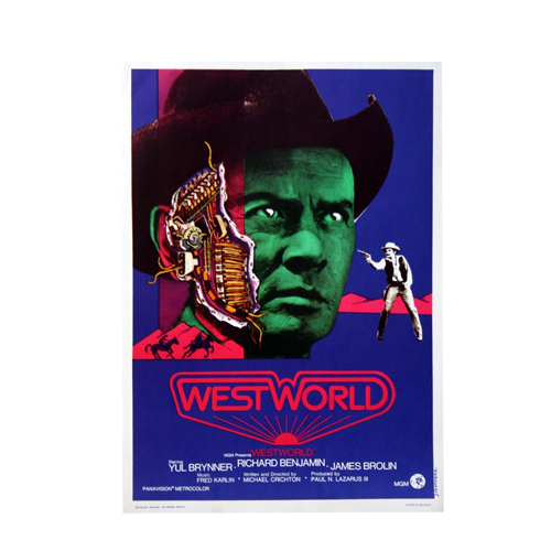 Westworld _ Maison Ecologie Numerique